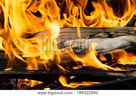 Burning Wooden Log Covered With Red Fire