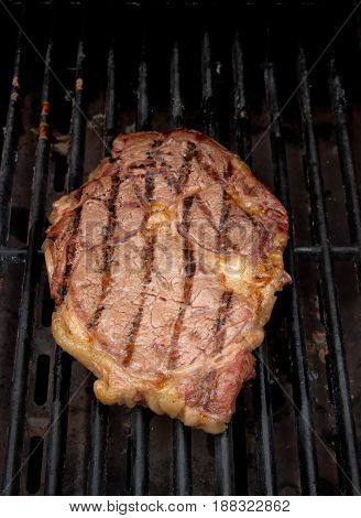 A seared ribeye steak grilling on a gas grill