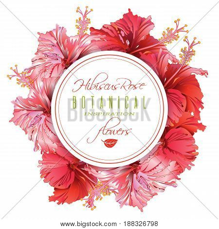 Vector red tea round banner with hibiscus flowers on white background. Botanic frame. Design for packaging, tea shop. Can be used as greeting card and wedding invitation. With place for text