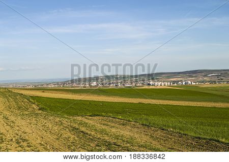 Wonderful natural landscapes from steppe climate, cultivated lentils and fallow fields
