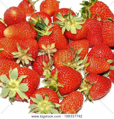 Fresh ripe and juicy strawberry isolated on white background.