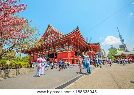 Tokyo, Japan - April 19, 2017: Tokyo icons: Kannon Temple in Senso-ji the oldest shrine in Tokyo, Tokyo Skytree symbol of city, cherry blossom, national flower of Japan and women in japanese kimonos.