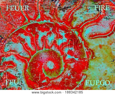 Close up of fossil ammonite cut as Element Fire