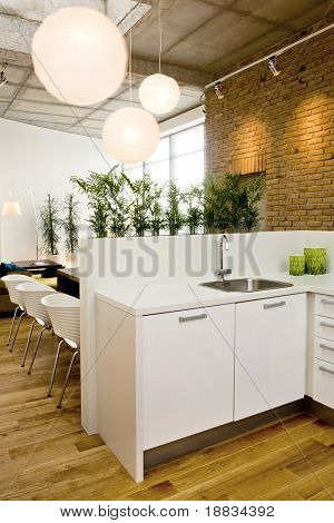 loft-kitchen in open space
