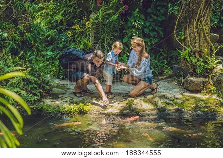 Happy Family Feeding Colorful Catfish In Tropical Pond