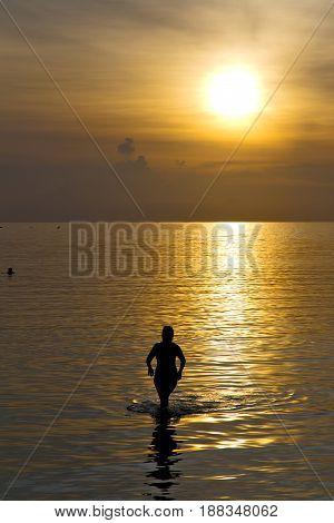Asia  The  Kho Phangan Bay Isle Sunset Sun Silhouette