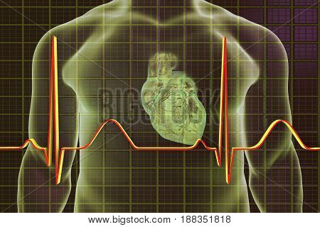 Electrocardiogram, ECG medical background with heart and silhouette of a male body. 3D illustration