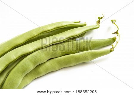 Green bean sample on white background, green bean pictures,