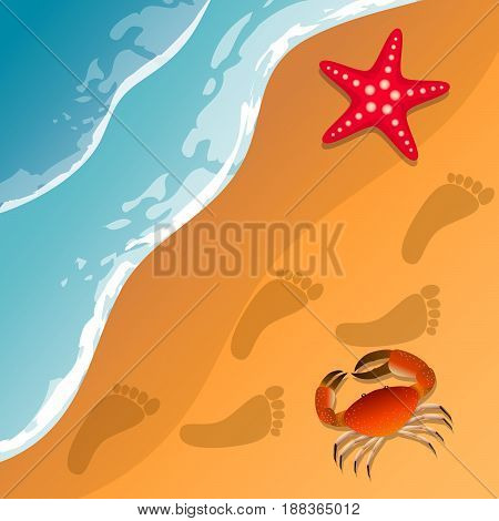 Illustrations at the beach theme. Summer vacation by the sea. Crab and starfish on the sand. Sea surf . Vector Image.