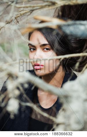 Adorable Girl Hiding In Leafless Tree Branches