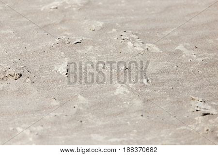 Close up of white sand as a background