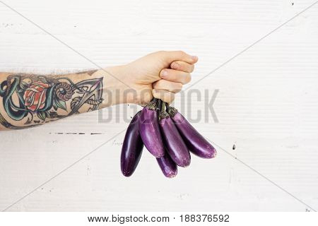 Close up view on vegetarian man hand with tattoos holding bunch of little fresh purple bright eggplants in tight fist on white bricks wall background.