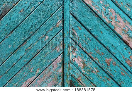 The texture of old turquoise painted peeled planks of wood