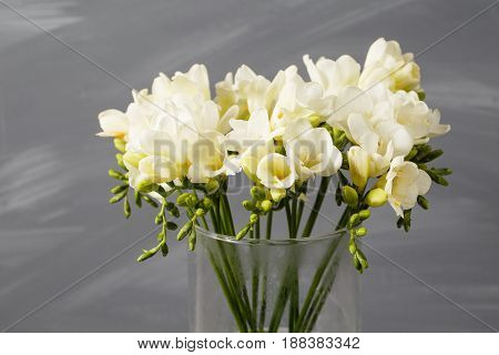 White freesia flowers in decorative vase on a background of gray wall.