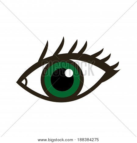cartoon eye human vision look watch icon vector illustration