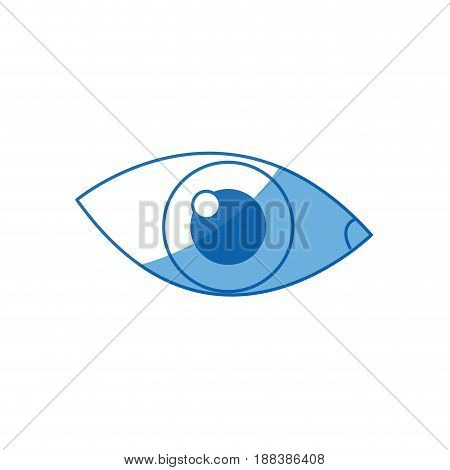 cartoon eye human vision look watch icon vector illustration
