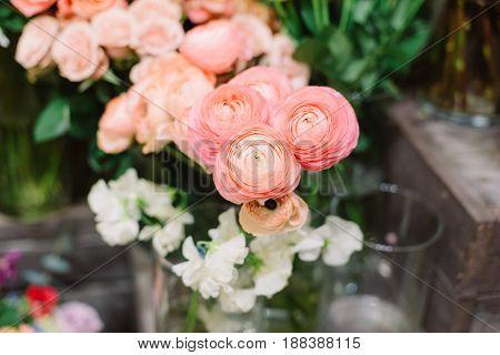 Magnificent tenderless bouquet of fresh, bright pink ranunculus