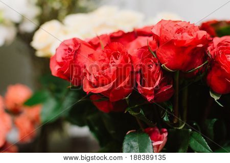Gorgeous bouquet of fresh and great bright red roses