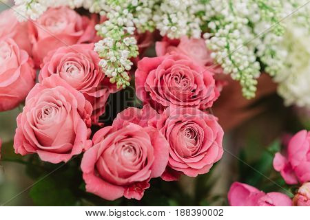 Tender bunches of amazing pink roses and white lilac