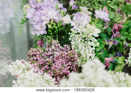 Tender bunches of white and purple lilac between green petals