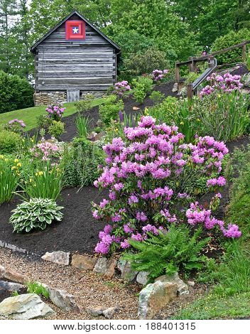 a garden of blooming rhododendron, azalea, and other shrubs, and a cabin with a quilt square in the background