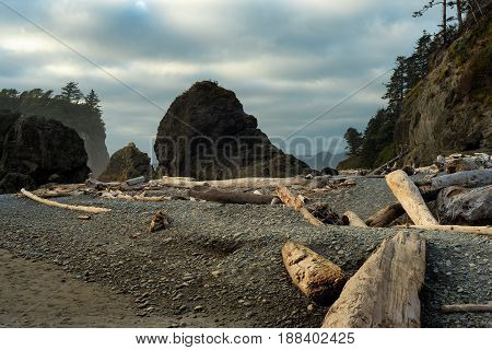 Driftwood and large boulders or sea stacks are prominent features of Ruby Beach on Washington's Pacific Coast