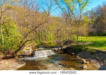 A small waterfall on a creek in a Cleveland-area park with the first greening of spring