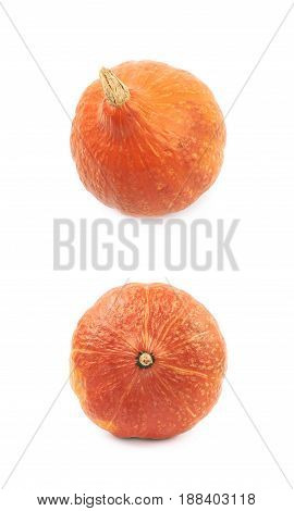 Ripe orange pumpkin isolated over the white background, set of two different foreshortenings
