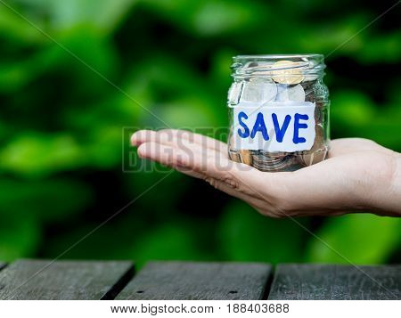 abstract money saving hand hold a glass jar Coins on wood table with green tree background