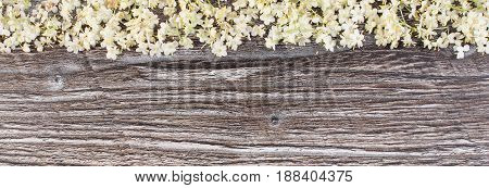 Elderberry Flowers On Rustic Wooden Board, Copy Space For Text