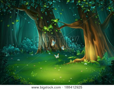 Vector cartoon illustration of background forest glade. Bright wood with butterflies. For design game websites and mobile phones printing.