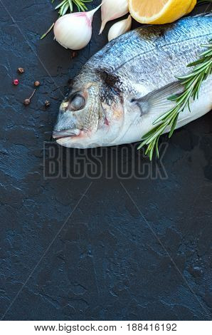 Fresh Raw Dorado Fish With Rosemary, Garlic And Lemon And Pepper On A Black Slate Background. Select