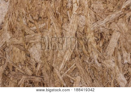 wall of hous from press sawdust background