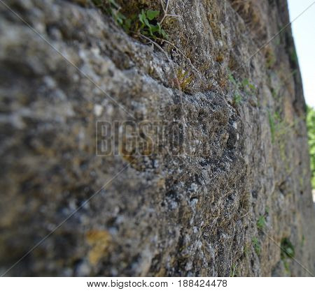 Stone wall abstract background close macro view