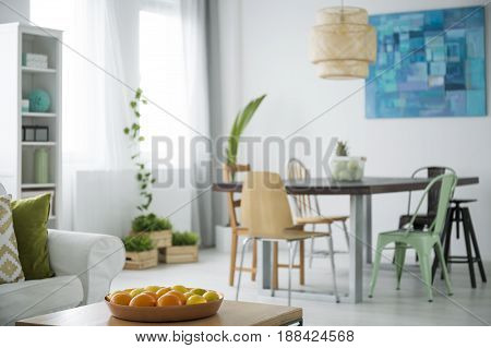 Modern white apartment with communal table chairs plants and sofa