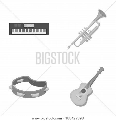 Electro organ, trumpet, tambourine, string guitar. Musical instruments set collection icons in monochrome style vector symbol stock illustration .