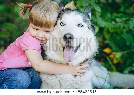 Cute Little Girl Hugging A Husky