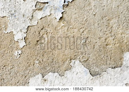 Wall Plaster- Abstract Texture