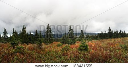 Fog In The Mountains. The Fog Looms On The Forest. The Nature Of The Southern Urals. Rain And Fog Ov