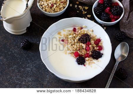 Granola. Homemade Yoghurt With Granola, Currant And Black Raspberries. Copy Space.