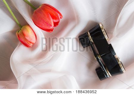 Black Binoculars And Flowers Of A Tulip For A Trip To The Theater. Top View. Background Of A Soft Pi
