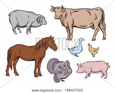 farm animals. set of color sketches on a white background