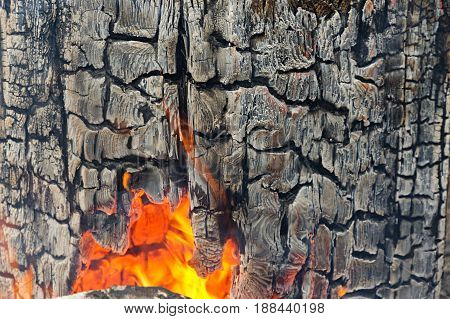 Fragment of the burned log in the fire. At the bottom there is a hole with fire inside. Texture. Background.