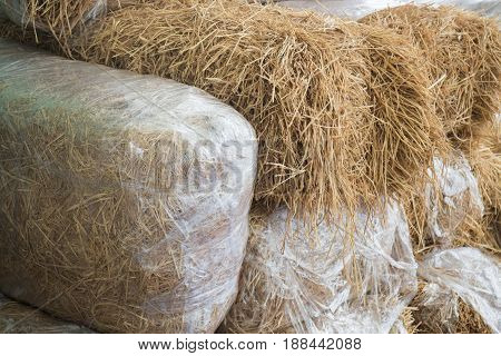 Stacked Blocks Of Bales Hay stock photo