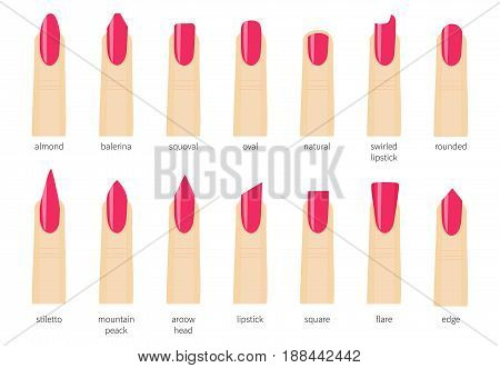 Different fashion nail shapes. Set kinds of nails. Salon nails type trends.Rounded and oval form, almond and square,