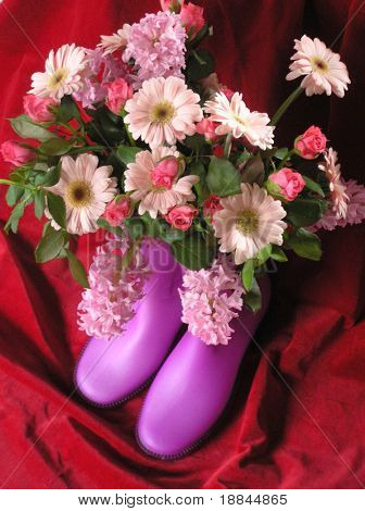 photograph of a composition with  daisies roses and boots against a red velvet background