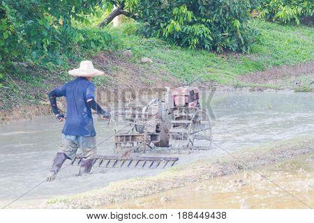 Thai farmer plowman using tiller tractor pushcart in rice field