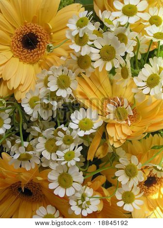 photograph of a bouquet with yellow gerbera's and tine little daisies