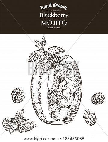 Blackberry mojito. Vector sketch illustration of cocktails. Hand drawn.