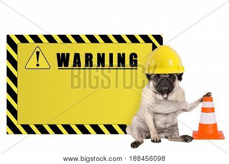pug dog with yellow constructor worker safety helmet and blank warning sign isolated on white background